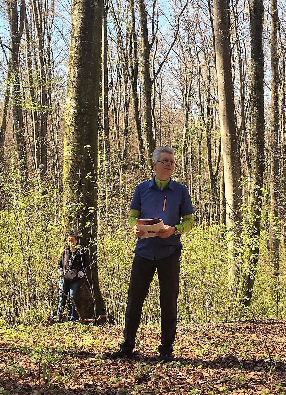 127 VIA MUNDI 2017 - Christoph Schumm leitet die Wandergruppe